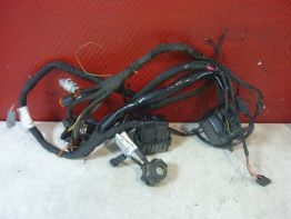 Wire Harness Buell 1125