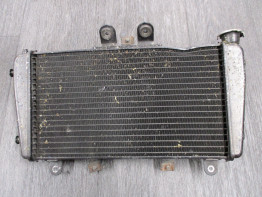 Radiator Triumph Speed Triple 1050